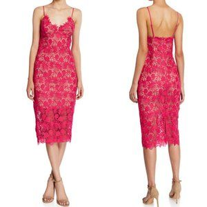 NWT Bardot Tayla Pink Lace Cocktail Midi Dress